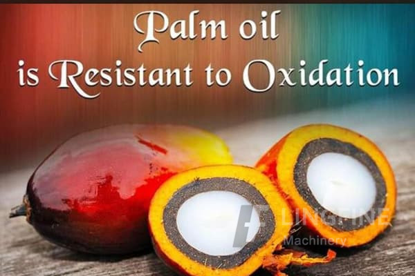 renewable bleaching alternatives for palm oil refining