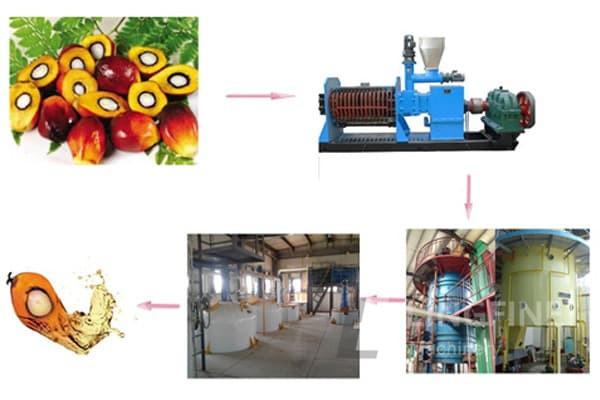 palm fruit/bench oil pressing - palm oil mill machines