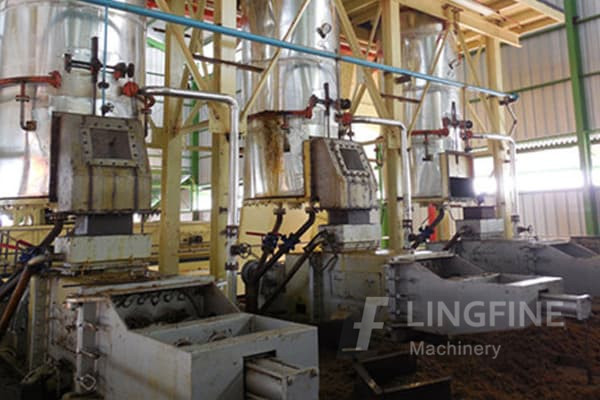 Hot Sale Philippine Market Palm Kernel Copra Oil Production Machine In Indonesia