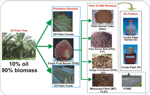 2 150Q2110252Q2 - What is the waste in palm oil mill? How to recycling the waste?