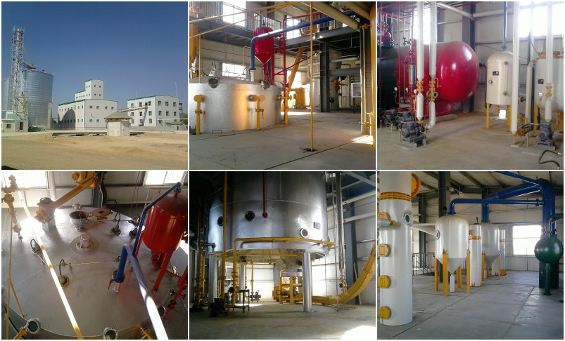 Palm Kernel Oil Extraction Machine 1 - Palm Kernel Oil Extraction Machine