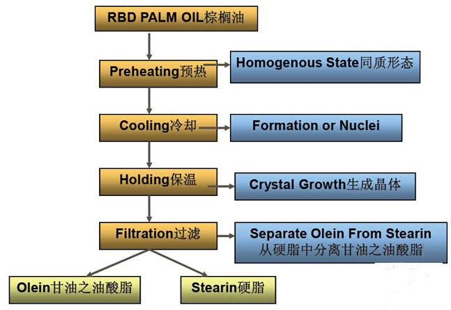 Palm oil fractionation process chart - Palm Oil Fractionation