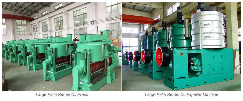 palm kernel oil expeller 2 - Palm Kernel Oil Expeller