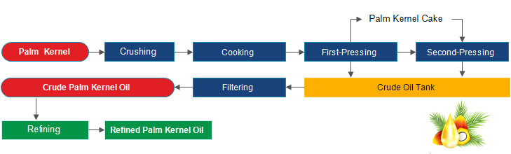 palm kernel oil extraction process - Palm Kernel Oil Expeller